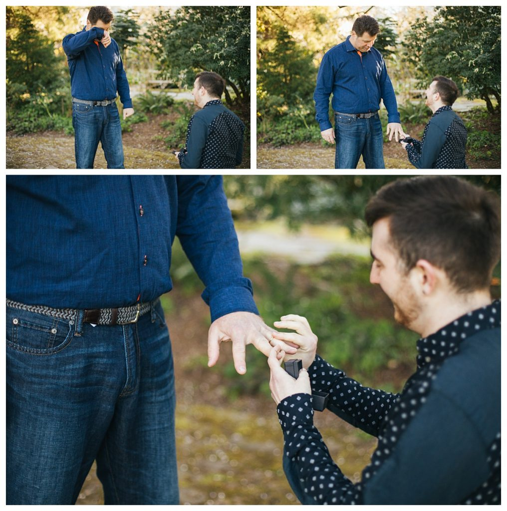 Golden Gardens Engagement session, couple at nearby park underneath cherry blossoms presenting each other rings