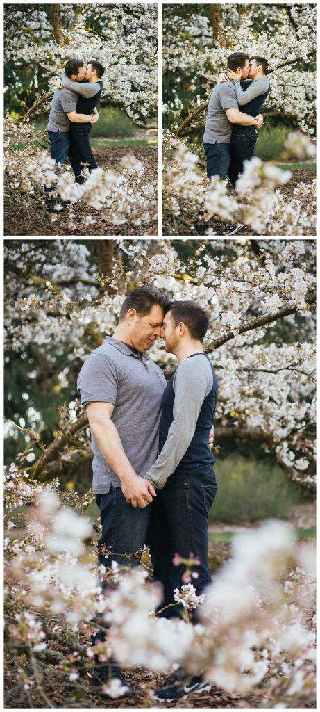 Golden Gardens Engagement session, washington park arboretum with couple under cherry blossoms
